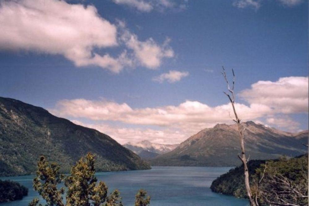 Dos familias aseveran haber visto a una imponente criatura en el lago Mascardi