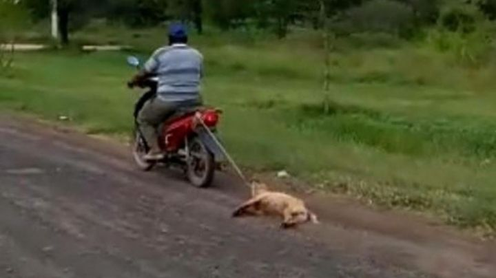 Arrastró a su perro atado a la moto por la banquina. HORRIBLE VIDEO