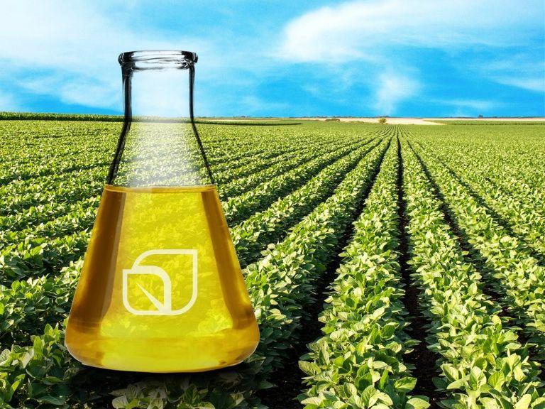 El gobierno definió un aumento del 10% en los precios del biodiesel y del etanol